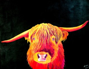 RICHARD-CLAYTON-Highland-Cattle