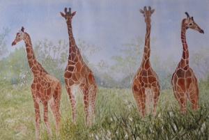 Artist: Hazel HaywoodTitle: Reticulated Giraffes, Kenya